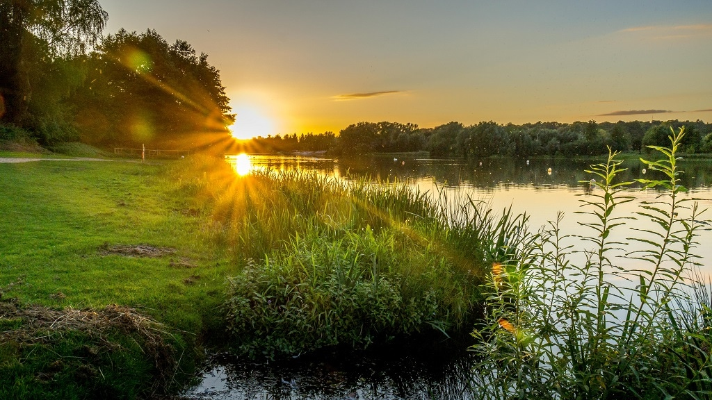 view over whitlingham country park at sunset