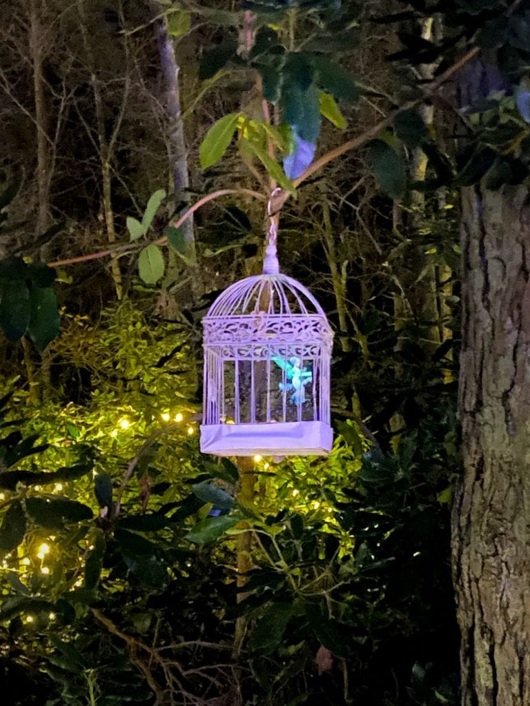 fairies at Sandringham luminate