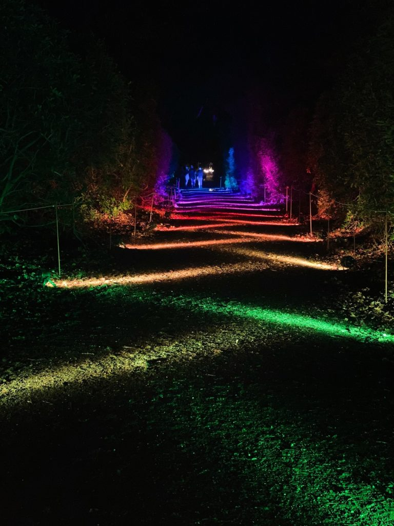 rainbow path at Luminate Sandringham