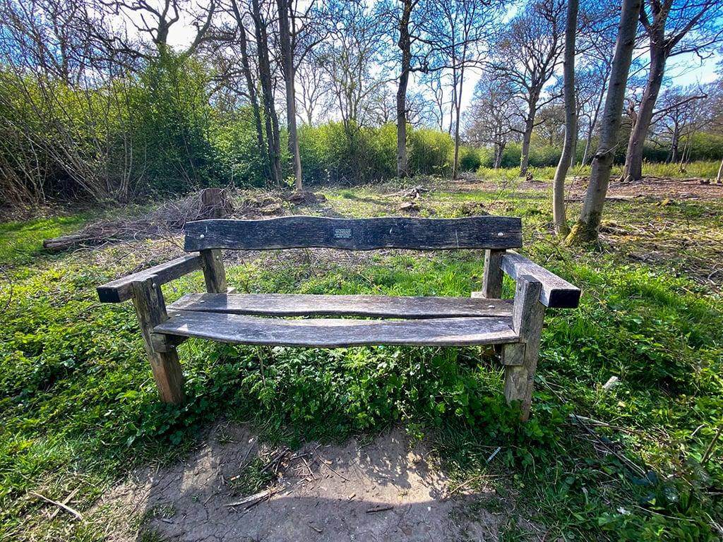 bench in wayland wood in norfolk