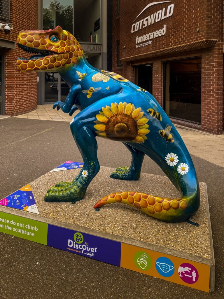 b-rex from the gogodiscover trex trail in norwich