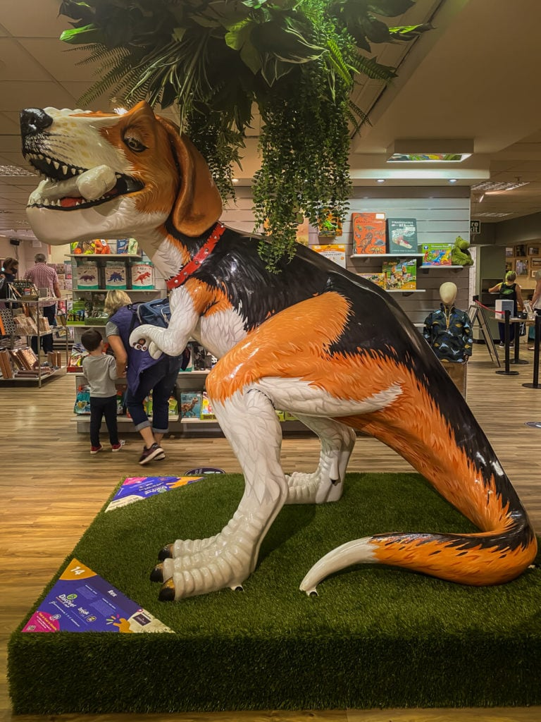Rex from the gogodiscover trex trail in norwich