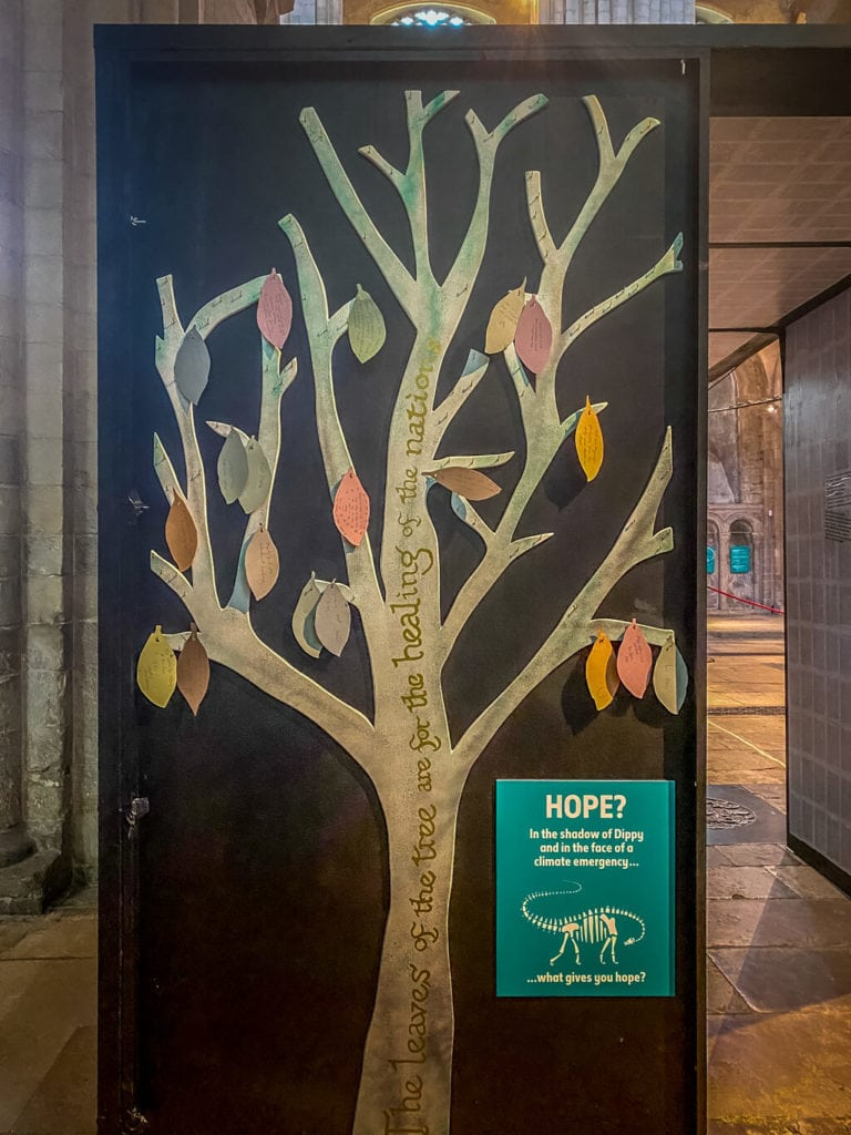 tree of hope at norwich cathedral