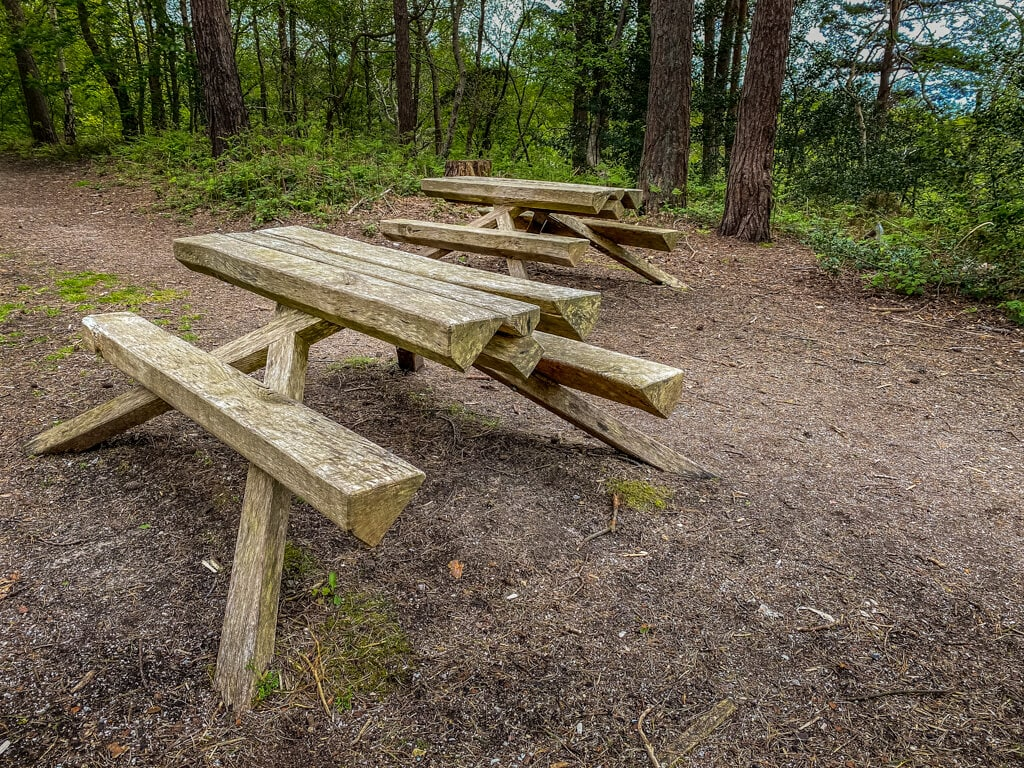 picnic tables at pretty corner woods