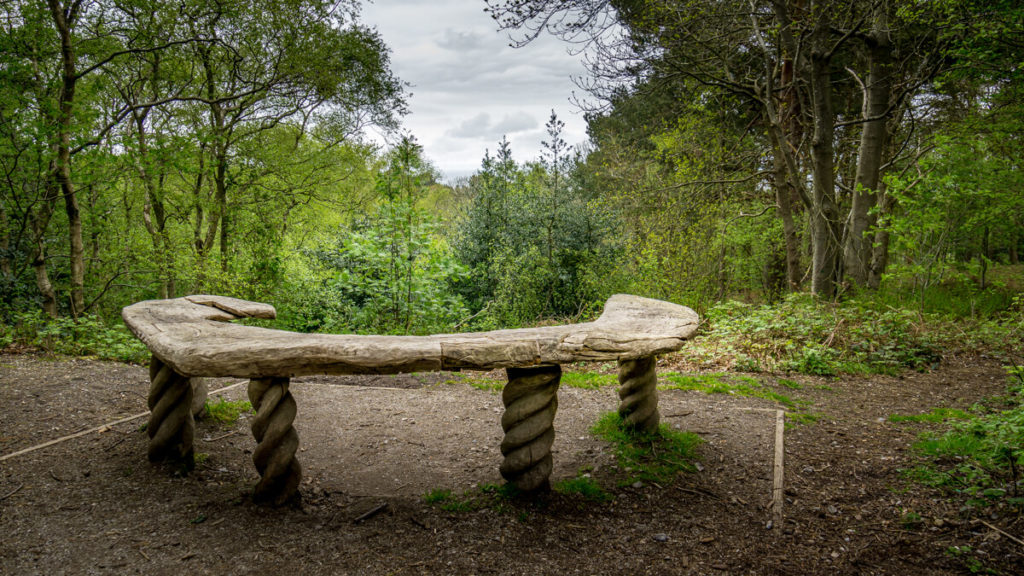 unique seat with a view in pretty corner woods