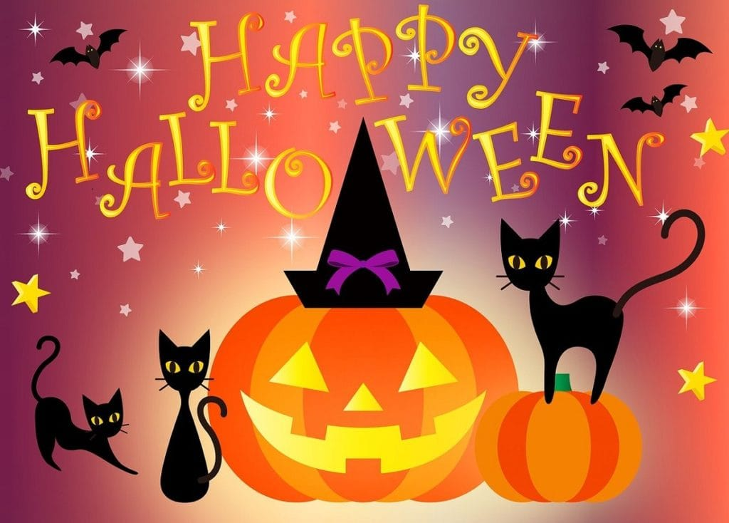 """halloween themed illustration with jack o lantern, black cats, witches hat and text """"Happy Halloween"""""""